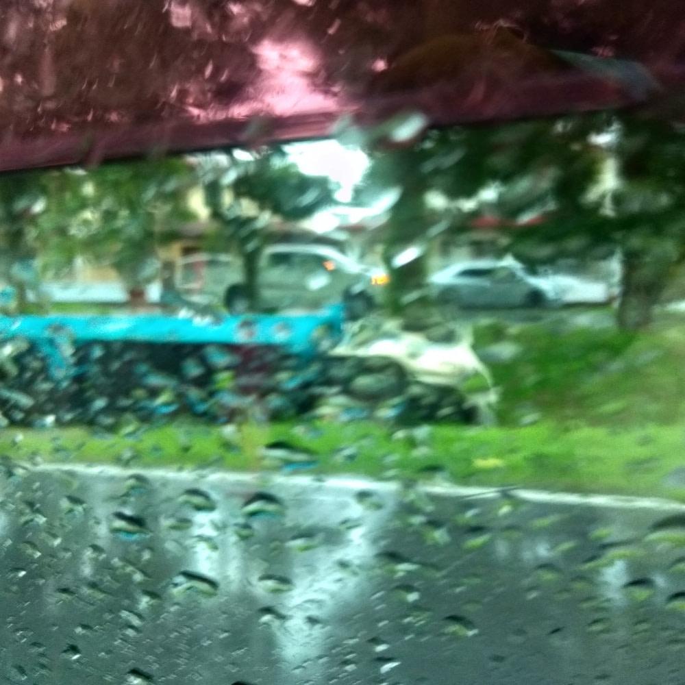 Speeding Ferrari Flips and Crashes into Trees at Calusa Circle