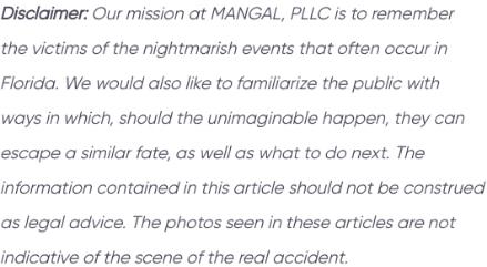 Disclaimer - MANGAL, PLLC